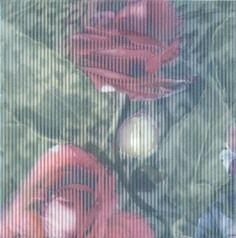 Весеннее шоу Декор Розы NT\A95\5155 20х20Плитка<br><br>