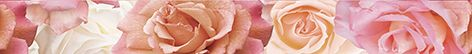 Wave Roses Бордюр (WA1J451DT) 5x44Плитка<br><br>