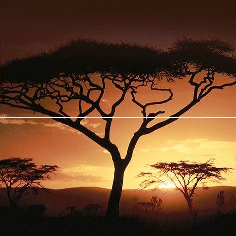 Africa Панно P2-2D210 40х40 (из 2 плиток)Плитка<br><br>