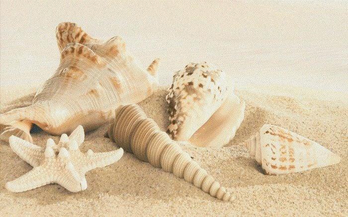 Amalfi sand decor 01 250х400 мм - 13 шт.Плитка<br><br>
